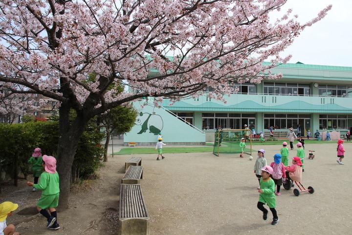 あけぼの幼稚園